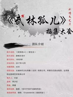 武林孤儿剧情海报